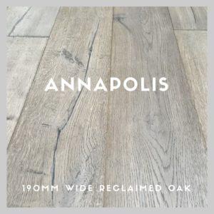 ANNAHS-LOGO-1