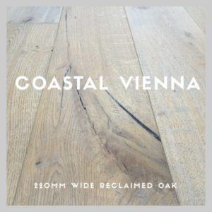 coastal-vienna-logo-1-600x600